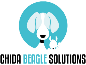 CHIDA BEAGLE SOLUTIONS PRIVATE LIMITED